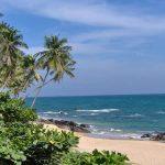 Découvrir le Sri Lanka et ses charmants sites lors d'un séjour en Asie